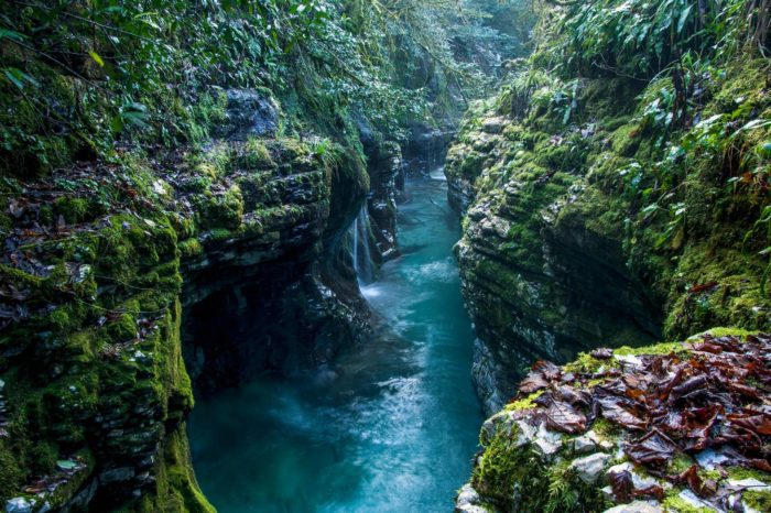 Martvili & Okatse Canyons Tour
